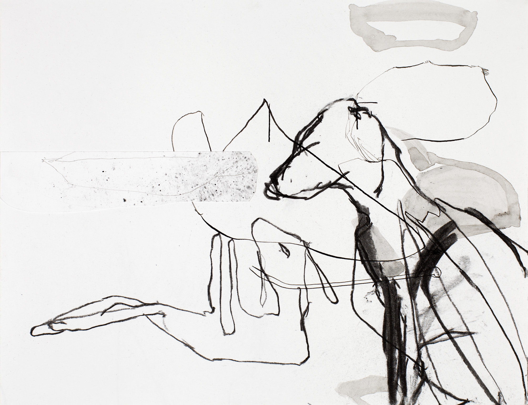 anna_rudolf_zt_2015_houtskool_inkt_en_collage_op_papier_250x325mm